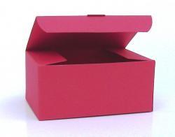 Klappdeckel-Box mittelgroß